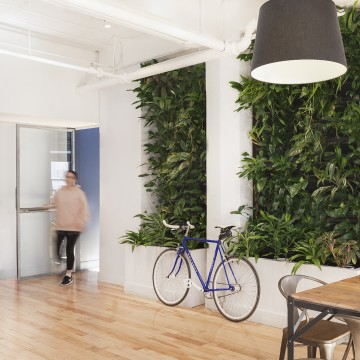 TUX-Office-Green Wall